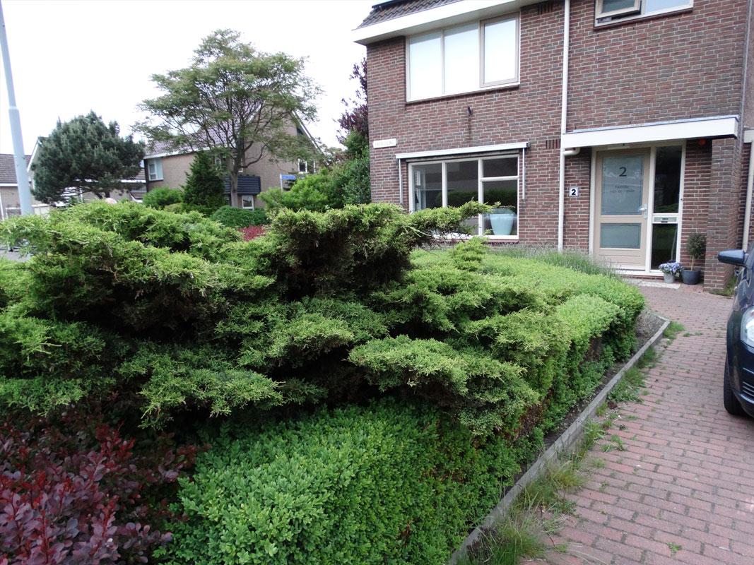 Tuinmetamorfose Buitenwens Heemskerk
