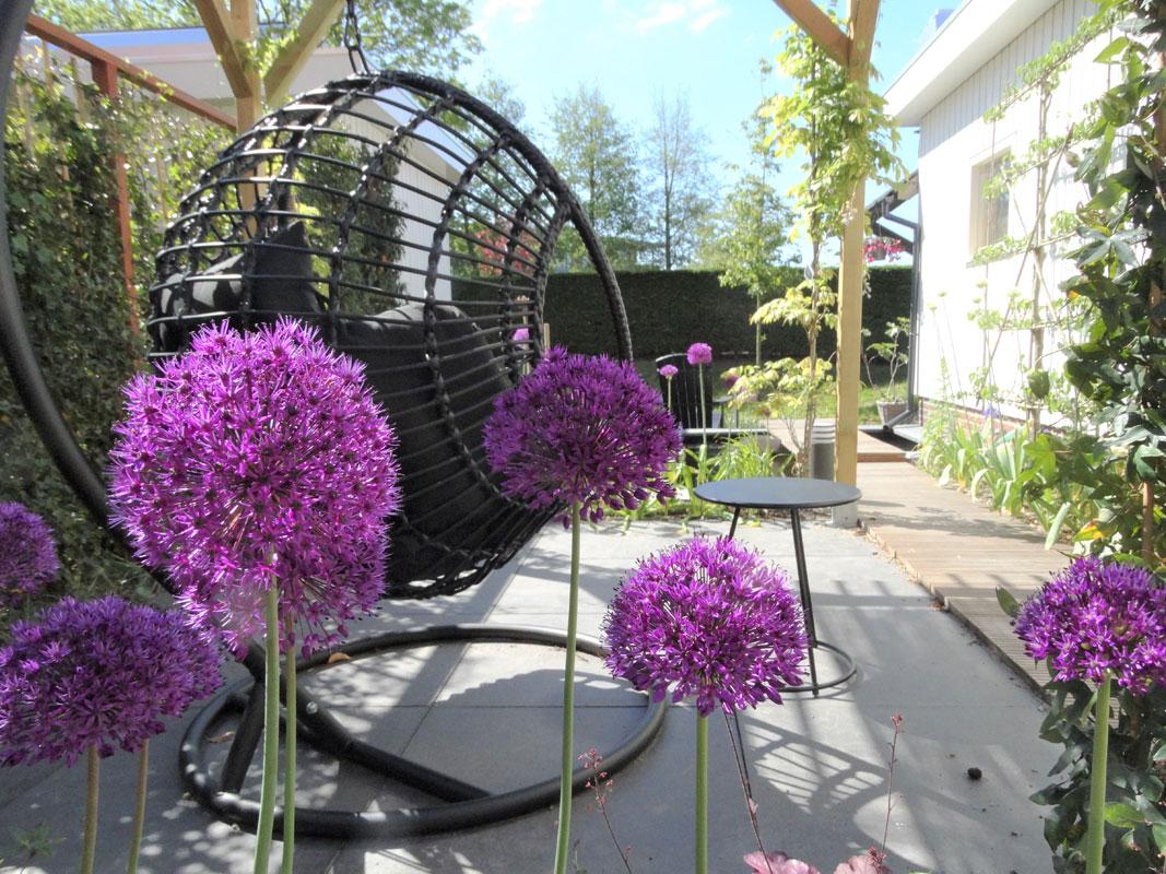 Buitenwens-Tuinontwerp-Heemskerk-Stijlvolle-moderne-tuin-met-zwarte-hangstoel-Na
