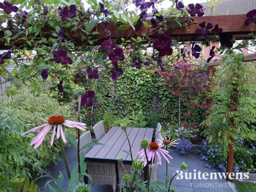Doorkijkje in tuin met roze zonnehoed en bordeaux clematis Buitenwens Tuinontwerp Heemskerk Bloementuin met knusse zitjes Buitenwens Tuinontwerp Heemskerk