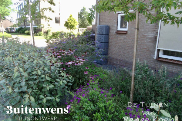 Buitenwens-Tuinontwerp-Heemskerk-Metamorfose-Duurzaamheid