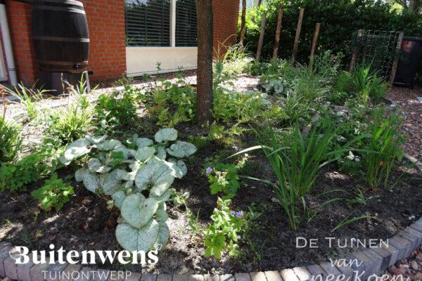 Buitenwens-Tuinontwerp-Heemskerk-Metamorfose-Schaduw-tuin