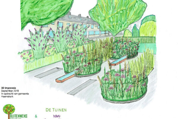 Buitenwens-Tuinontwerp-Heemskerk-Metamorfose-Versteende-Tuin-3D