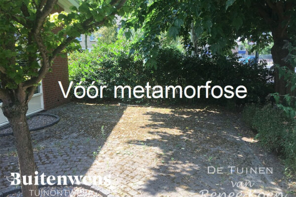 Buitenwens-Tuinontwerp-Heemskerk-Metamorfose-Versteende-tuin